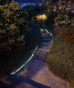paved steps looking down to driveway - lit by LED strip lights