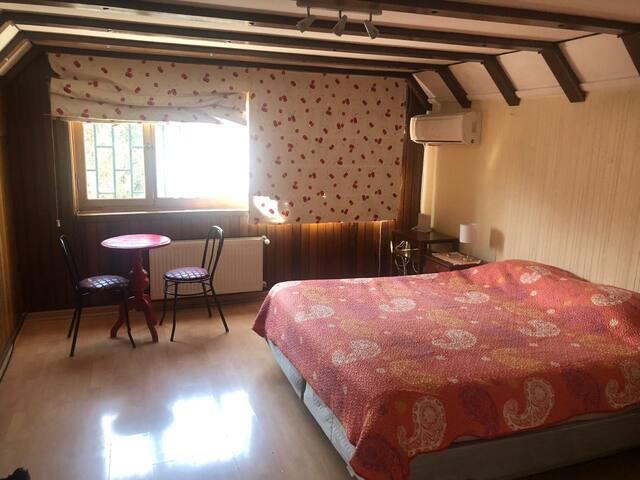 Habitación cama King + 2 camas con baño gigante