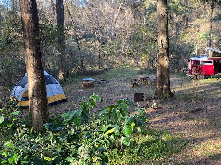 Camp out! 3 acres of nature in yard +trails & Town