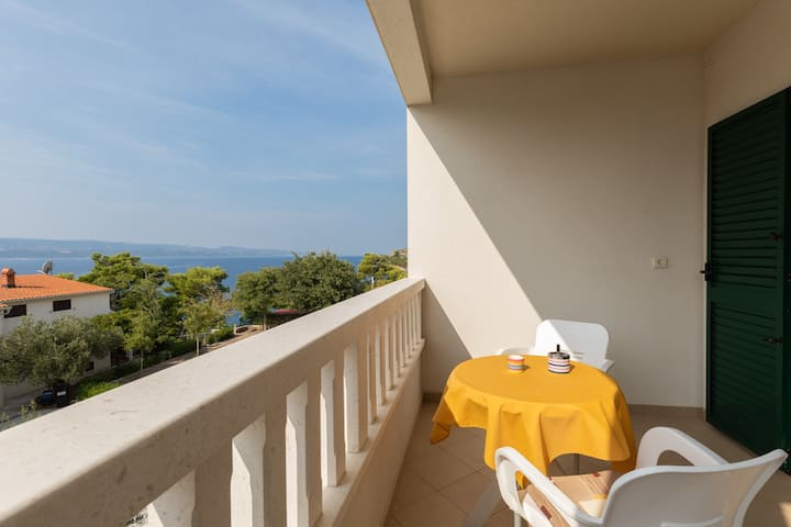 Apartment 50 m from the beaches