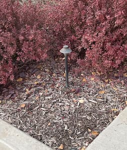 Yard lamps light up the entry path