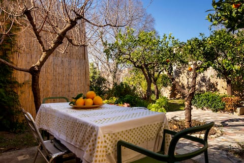 Charming house w citrus garden