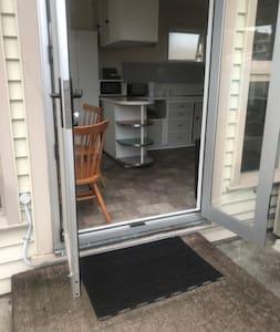 Large 110cm clear door