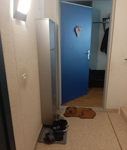 Vstup z chodby od výtahu