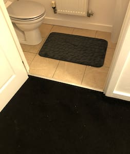 Entrance to toilet with sink