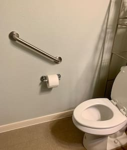 Grab bar for the hallway toilet.