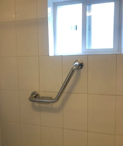 Fixed grab rails for shower