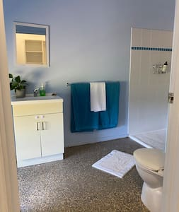 wide entrance to bathroom, with an easily accessible  shower complete with a hand held shower rose