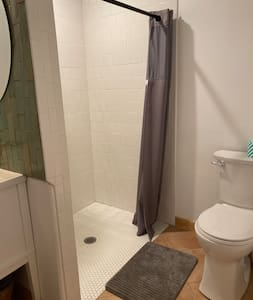 The space between toilet and wall is not wide enough for a wheelchair but is level-entry to accommodate ease of entry. The shower is wide enough for a shower chair