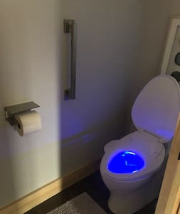Grab bar bolted to the wall.  Light up toilet to help you see at night.