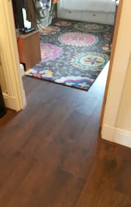 There is a standard width doorway and no steps at all within the apartment.