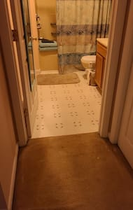 all one level throughout.  grab bars in shower