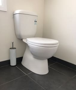 Easy access standard height toilet