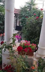 Big patio...just open your bedroom and go outside with very big patio with more than 20 color of flowers and some fruit tree