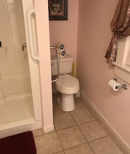 Grab bars next to the toilet and the outside of the shower