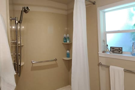 grab bars for shower and toilet area