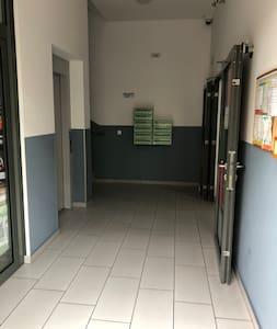 כניסה רחבה