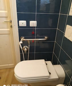 Fixed grab rails for toilet