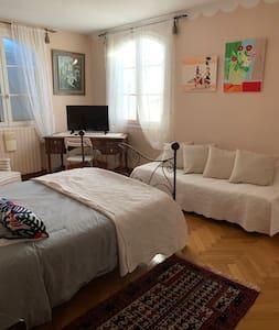 Très belle Chambre beige avec un deuxième lit pour une troisième personne possibilité d'avoir un lit parapluie pour un bébé ou petit enfant Chambre très spacieuse très ensoleillée avec télé