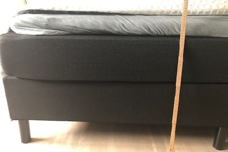 The height of the bed in bedroom 2 is 55 cm