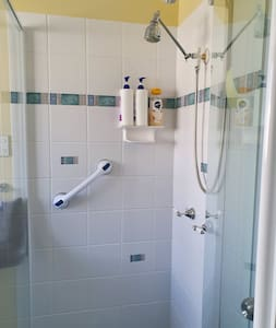 Fixed grab rail in shower