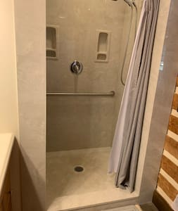 Walk-in shower with grab bar