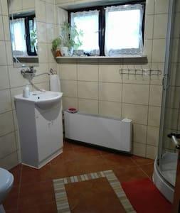 Cabezal de ducha manual