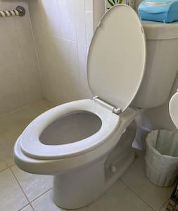 Toilet is 17' off the floor.