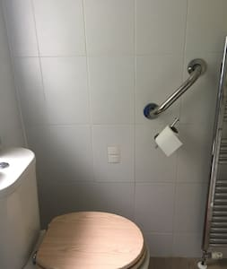 Grab bar on wall by toilet