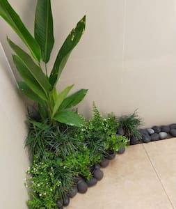 access to shower  with little green garden.