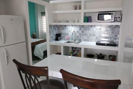 Entrando al departamento no existe ningún desnivel, excepto para el baño (1 escalón).  En la cocina hay suficiente espacio para dos personas cocinando al mismo tiempo.