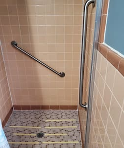 two in shower grab rails