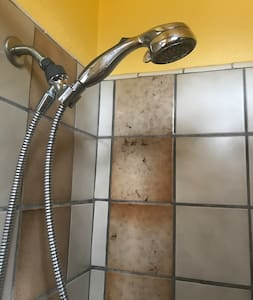 There is a hand held shower and there's also a small step into the shower.