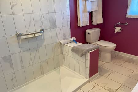 Soap dish is grab bar; toilet paper holder and all towel bars are grab bars.