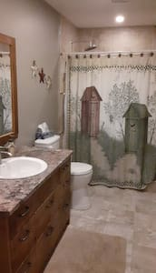 accessible shower, large bathroom