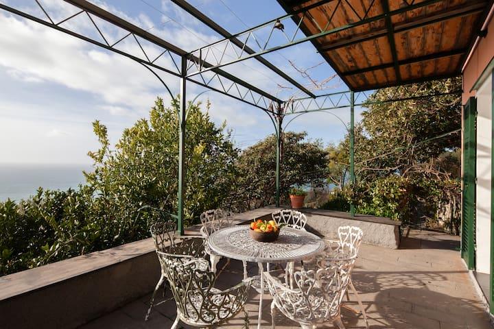 Villa Corbezzolo - The heart of Cinque Terre
