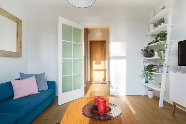 Charming and bright apartment opp Parliament