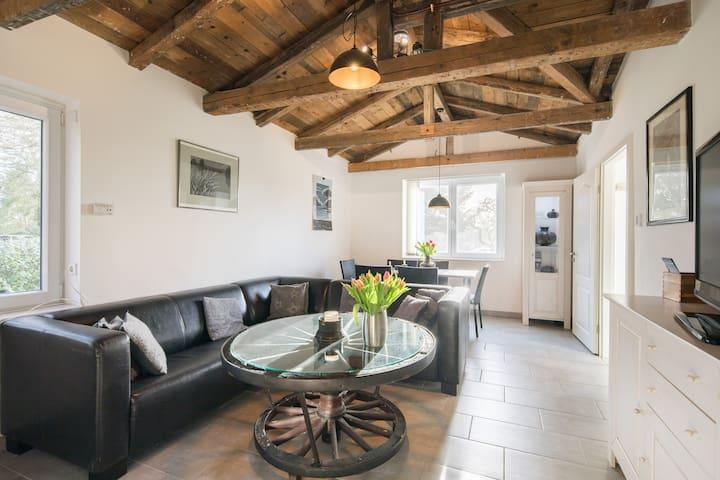 Große Wohnung mit eigenem Garten und Kamin