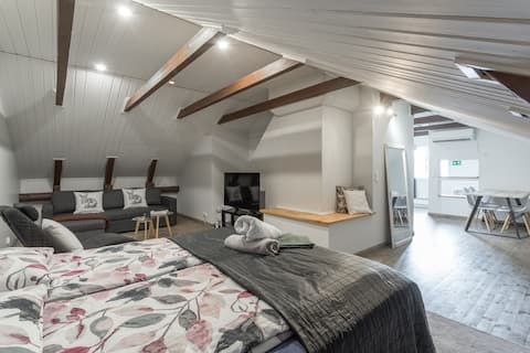 Open space loft studio in attic with parking space