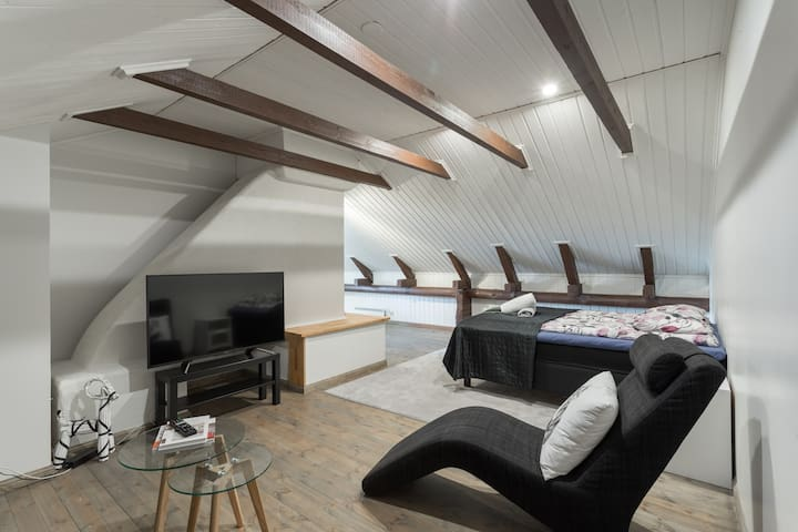 Unique and open space loft studio in the attic.
