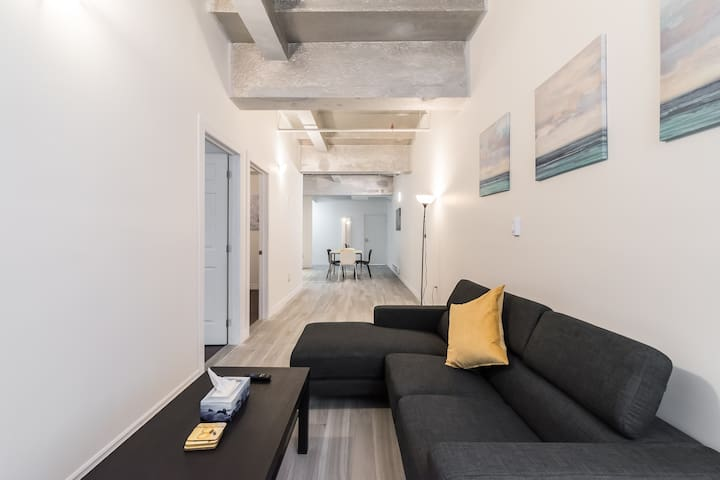 NEW SPACIOUS FULLY RENOVATED DOWNTOWN APARTMENT