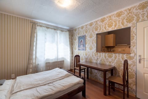Elegant small flat 30 minutes to Prague center