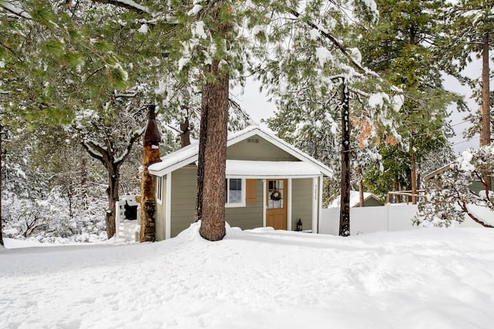 Luxury Newly Remodeled Tiny Cabin Under The Pines!