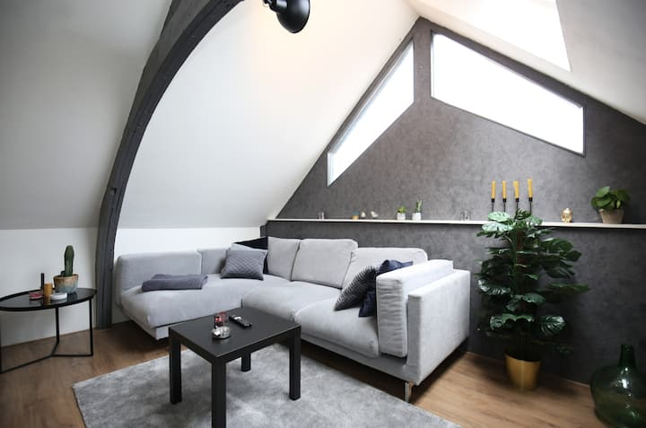 Luxe apartment 19 minutes from downtown Amsterdam