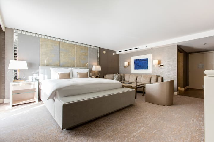Viceroy Skyline Suite ADA