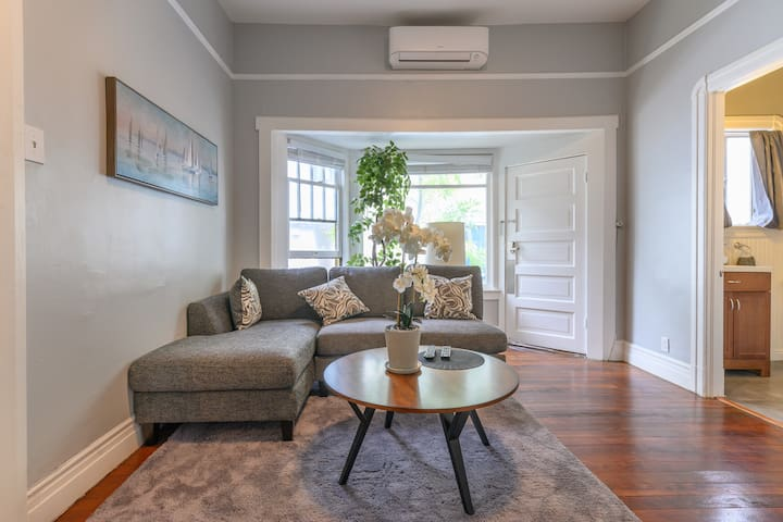 High ceiling, cozy large Apt. Walk to Gold Line