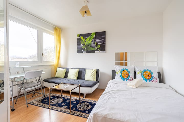 Cozy Studio Center Carouge