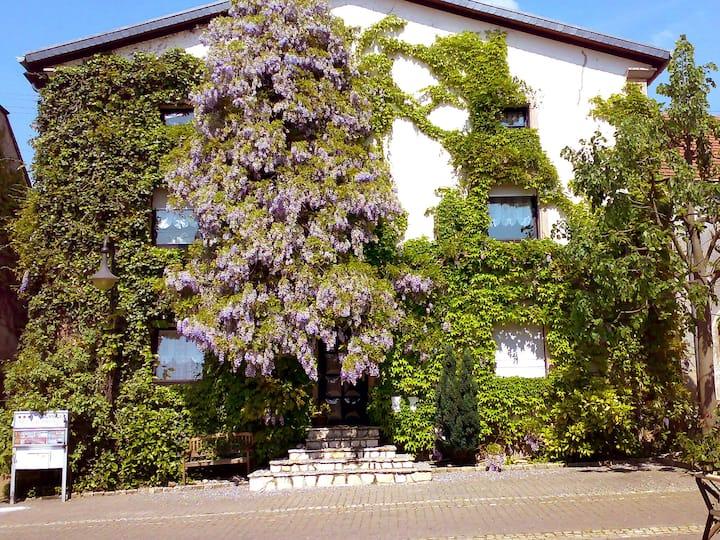 2-room granny flat 50 m² Ferienwohnung Plath in Nennig