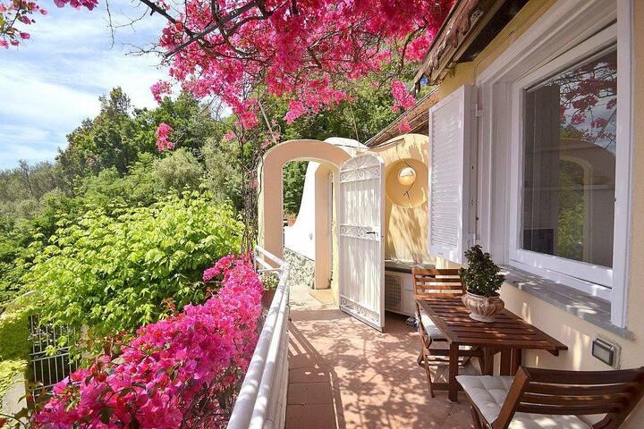 Casa Aminata