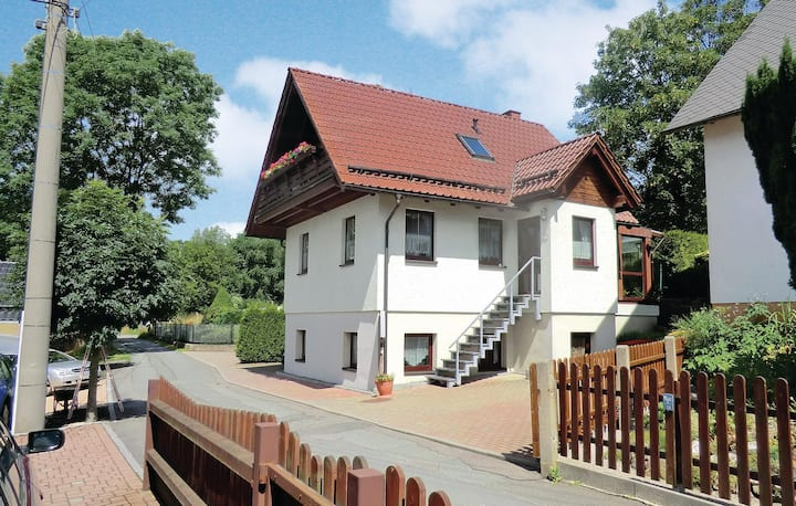 Awesome home in Auerbach/Ot Rempesgrün with 4 Bedrooms